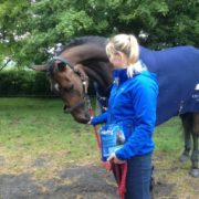 A treat after dressage