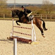 West Wilts Showjumping