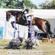 Wellington BE105